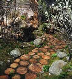 Another wooden path.