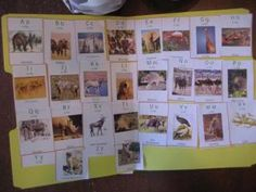 Africa Unit Study and Lapbook from I Choose Joy