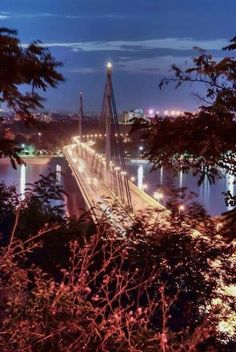 Serbia Travel, Novi Sad, Albania, Bulgaria, Fair Grounds, Places, Outdoor, Travelling, Beautiful