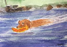 Spaniel ORIGINAL Miniature Watercolour 'The Swimmer' view here: https://www.etsy.com/uk/listing/572311104/spaniel-original-miniature-watercolour?ref=shop_home_active_1