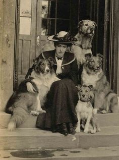 Woman with dogs. Collies, Wolfhound, terrier.