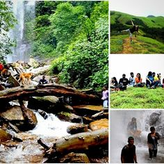 Located in the scenic western ghats, Kodachadri (1343m) in Shimoga is one of the better known trekking destinations in Karnataka. View stunning waterfalls and forests near this 10th tallest peak of the state BOOK NOW: http://naturewalkers.in/treks/kodachadri-trek/  #trekking #karnataka #weekend #plan #bangalore #getaways #naturewalkers #trek #stayfit #outdoor #mountain #love #livealive #monsoon #greenery