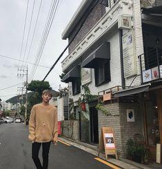 woosung the rose K Pop, Woo Sung, Kpop Girls, Kpop Boy, Boyfriend Material, White Roses, Jaehyun, Cool Bands, Beautiful People