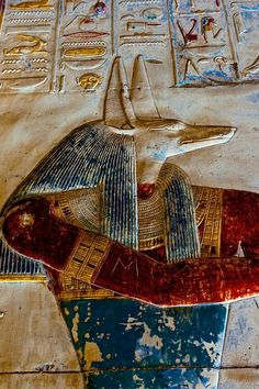 Painted raised relief of the God Anubis, God of Embalming. Mortuary Temple of Seti I, Abydos. Painted limestone relief.