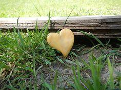 Mirkabrutko / Zlaté srdce