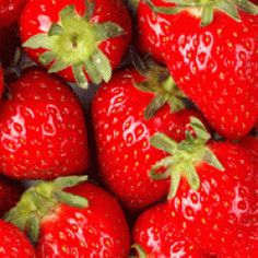 Strawberries are wonderful fruits packed with nutrients and flavor! But you definitely don't have to eat them plain. Try one of these delicious strawberry recipes. Hydroponic Strawberries, Grow Strawberries, Stuffed Strawberries, Covered Strawberries, Strawberry Bread, Strawberry Shortcake, Strawberry Balsamic, Strawberry Plants, Strawberry Sauce