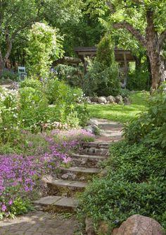 Puutarhassa portaat helpottavat liikkumista. Voit tehdä ne puusta, kivestä tai betonista. Katso Viherpihan kauniit ideat puutarhan portaisiin.