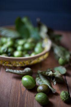 green walnuts camera & clementine