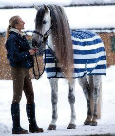 Horseware Ireland -Horse blanket- Apparel & Accessories. PetAccessoryStore $100