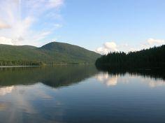 Le Canada animalier : Mes belles photos de Gaspésie Jolie Photo, Canada, Nature, River, Mountains, Outdoor, Animaux, Travel, Good Photos