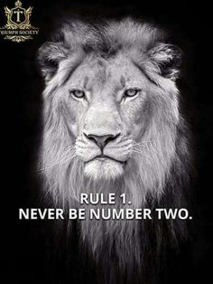 67 Top Quotes Inspirational for Success That will Inspire You Extremely 18 Leo Quotes, Strong Quotes, Wisdom Quotes, Qoutes, Tiger Quotes, Quotations, Lioness Quotes, Betrayal Quotes, Doodle Quotes