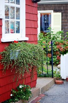 Rockport, Ma is built with beautiful little houses and shops. love it.