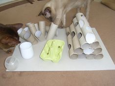 Do It Yourself: Katzenfummelbrett selber bauen Looking for cheap cat toys? Diy Cat Toys, Pet Toys, Diy Jouet Pour Chat, Cat Activity, Cat Hacks, Cat Feeder, Cat Puzzle Feeder, Animal Projects, Cat Supplies