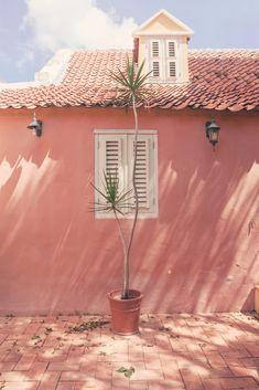 Curacao Last Minute Vakanties 2020 ⁂ VakantieDealz. Peach Aesthetic, Aesthetic Photo, Fred Instagram, Instagram Tips, Pink Walls, Willemstad, Belle Villa, Pink Houses, Wall Collage