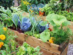 Optimiser au maximum l'utilisation du sol - Photo : Bhelas.co.uk