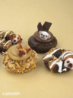Small Dog Donuts