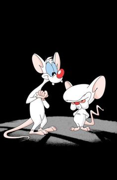 Pinky & The Brain iPhone 5 Wallpaper