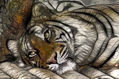 fractal tiger wallpaper | Tiger fractal - fractal, animals