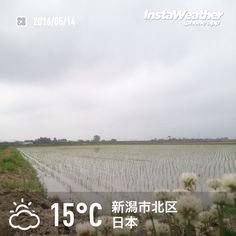 おはようございます! 曇っていますが雨の心配はなさそうです〜♪
