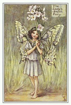 Lady's Smock Fairy by Cicely Mary Barker by OLDBOOKSMAPSPRINTS