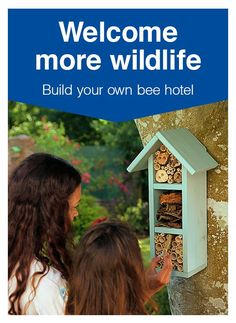 A bee hotel is a brilliant way to attract wildlife into your garden. You don't have to be a DIY or gardening expert to make a difference, here we have created a simple step-by-step guide to help you boost the numbers of bees in your garden. With some bamboo, logs and bark, you can provide a sleeping place for solitary bees, which don't actually nest in their hives. So get buzzy, build your own and protect our pollinators!