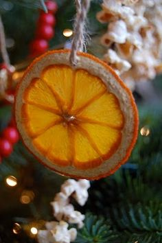 98 Great Dried Orange Slices Decoration Images Christmas Ornaments