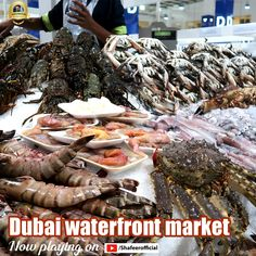 Dubai Waterfront Fish Market - Full HD Video :) #Shafeerofficial #DubaiWaterFrontMarket #WaterFront #Youtube #Dubai #dxb #UAE #Travel #Fish #FishMarket Dubai Waterfront, Full Hd Video, Dubai Travel, Travel Activities, Uae, Fish, Marketing, Ethnic Recipes, Youtube