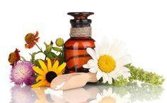 Prepara fácilmente tu propio botiquín natural solo con 10 plantas medicinales básicas y de eficacia probada.