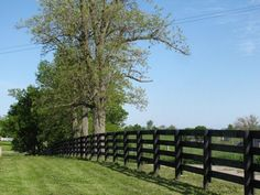 Livestock fencing for the rest of acreage owned