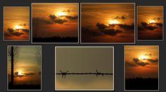 collage van zelf gemaakte foto's