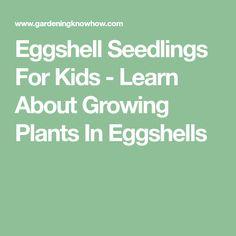 Eggshell Seedlings For Kids - Learn About Growing Plants In Eggshells