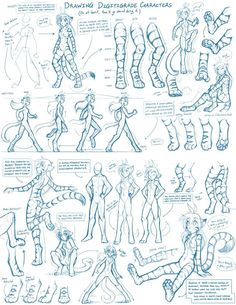 Twokinds Tutorials - Digitigrade Legs Looking around Deviantart, I noticed that there weren't very many good, detailed guides on drawing characters with digitigrade legs, like those featured on my ...