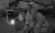 #Dschungelcamp Tag 13: Wer ist raus? Was passierte im Camp? #IBES #RTL