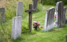 Families turning to state claiming they cannot afford to pay towards burying   loved-ones before splashing out on flowers and memorial trinkets, study   finds