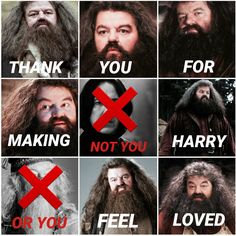 Hagrid is my favourite character
