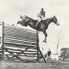 Still holds the Guiness World Record for highest jump ever jumped by a horse- 8 feet!!