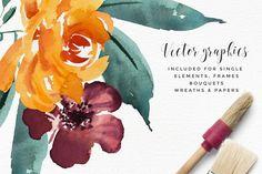 Watercolor Flower Clipart -Paprika - Illustrations