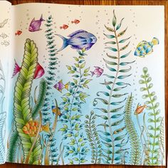 Johanna Basford | Colouring Gallery By Micaela
