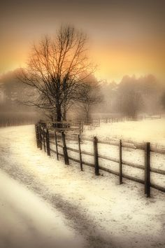 ~Winter's Warmth (Photo: Jenny Woodward)~ Perfect image of a wintter wonderland, for PHOTO MAGAZINE