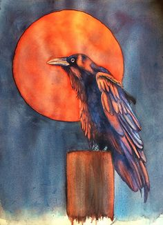 Harvest Moon Raven by Amy Rattner Watercolor ~ x Crow Art, Bird Art, Watercolor Animals, Watercolor Art, Crow Painting, Raven Bird, Tinta China, Crows Ravens, Native American Art