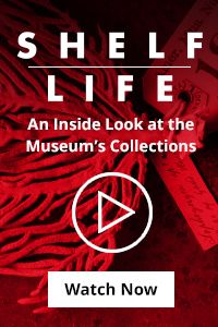 Join famed theoretical physicist Lawrence Krauss for a journey through the unexpected fabric of reality, where fact is often stranger than fiction. Lawrence Krauss, Life Video, Shelf Life, Sea Turtles, Museum Collection, Great Stories, Snakes, Natural History, Scientists