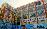 A Tour of 5Pointz Aerosol Art Center