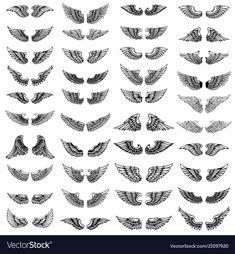 Big set of wings on white background. Design elements for logo, label, emblem, sign. Forearm Wing Tattoo, Chest Tattoo Wings, Wing Neck Tattoo, Forearm Band Tattoos, Torso Tattoos, Neck Tattoo For Guys, Chest Piece Tattoos, Sleeve Tattoos, Jail Tattoos