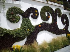 Anythingology: Going Up - Vertical Gardening
