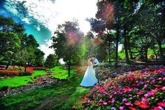 The garden of the happiness.  #カメラマン #ブライダルカメラマン#Weddingphotography #weddingphotographer #プレ花嫁 #前撮り#instagramjapan#かわいい #photographer #ヘアメイク#結婚式#花嫁#bride #groom#和装#結婚式準備#結婚準備#結婚式カメラマン#洋装#ig_wedding#weddingday#写真好きな人と繋がりたい#instawedding#igersJP#スタジオ#ウェディングフォト#weddingphoto#日本中の花嫁さんと繋がりたい#happiness