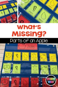 Does your little tot love apples? Bite into learning with this unit and take a deeper look at apples through the exploration of books, dramatic play, and games. Preschool Apple Activities, Preschool Apple Theme, Sequencing Activities, Teaching Activities, Learning Through Play, Fun Learning, Apple Life Cycle, Apples To Apples Game, Students