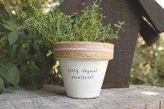 Party Thyme! Excellent!