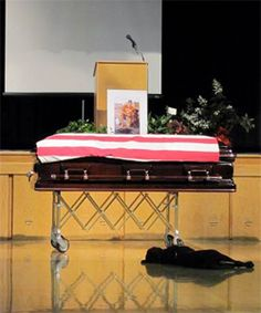 Labrador retriever Hawkeye mourns the death of its master, Navy SEAL Jon Tumilson at a memorial service in Rockford, Iowa • photo: Lisa Pembleton on Getty Images • video: http://www.youtube.com/watch?v=tO_ci9_kHqk