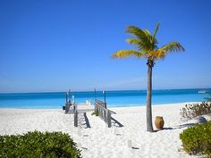 Club Med. Turks & Caicos. Adult Only Resort. Sam and I are debating this and the one in Turkey for our Honeymoon.
