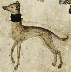 """It's About Time: Dog Days of Summer - Over 40 Dogs of the Middle Ages """"rescued"""" from illuminations, tapestries, & even playing cards. Greyhound Art, Italian Greyhound, Skinny Dog, Medieval Art, Medieval Times, Dog Runs, Dark Ages, Dog Art, Illuminated Manuscript"""